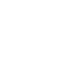 Mini-World (Autoservice Besuijen Goes) logo